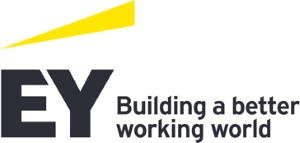 ERNST & YOUNG BUSINESS ADVISORY SOLUTIONS SA